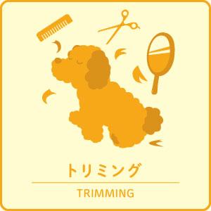 icon_trimming.jpg